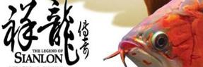 桂平水族批发市场 桂平水族馆 桂平龙鱼